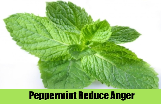 Peppermint Reduce Anger