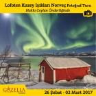 Lofoten ve Kuzey Işıkları Fotoğraf Turu - azgezmis.com