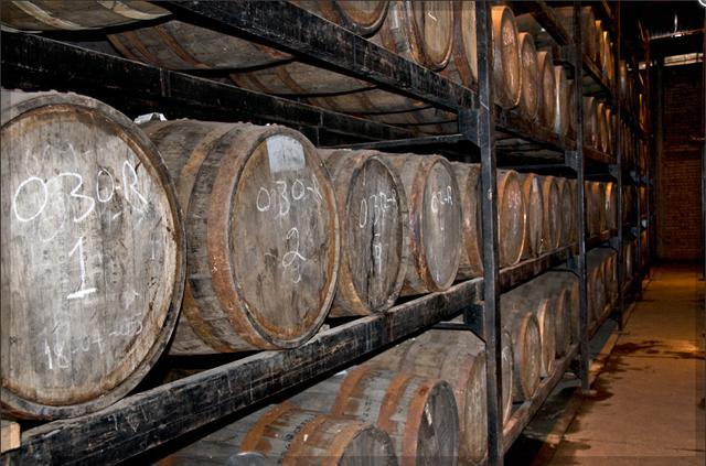 Aging Platinum: Unaged Reposado: Minimum of 3 months in American Oak barrels Añejo: Minimum of 12 months in American Oak barrels