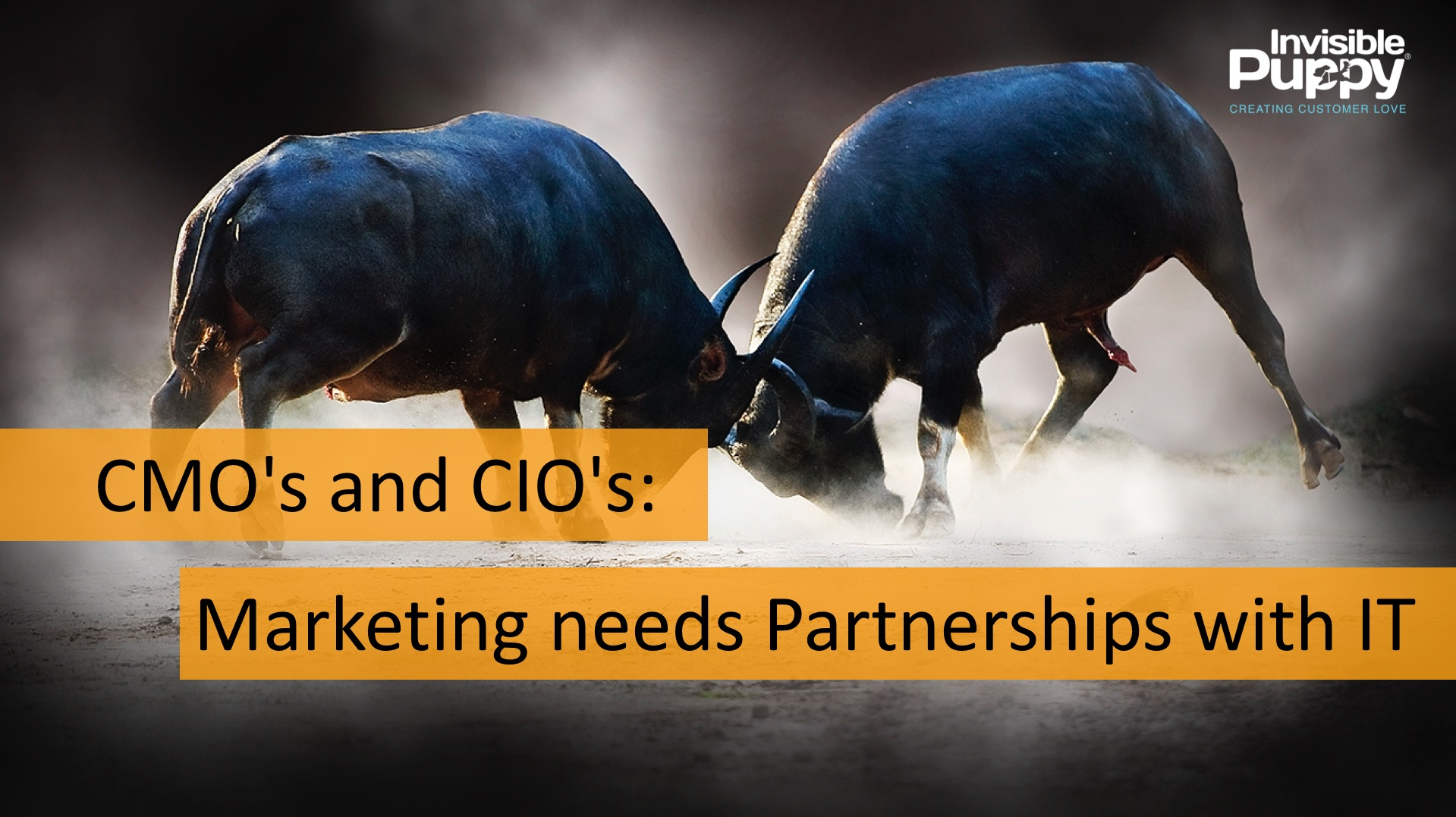 cmo-and-it-partnership-needed