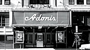 The Adonis NYC