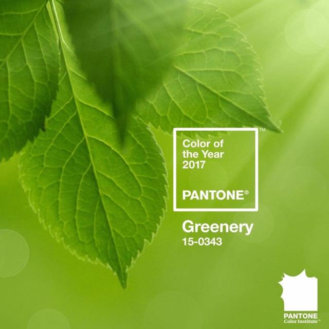 Pantone geenery color oft the year 2017