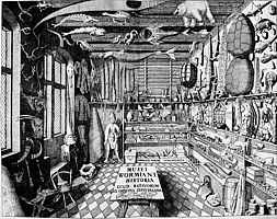 Ole Worm's cabinet of curiosities (Museum Wormianum, 1655)