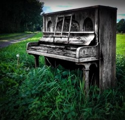 Piano in a field-4