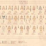 Infografica: le armature di Iron Man