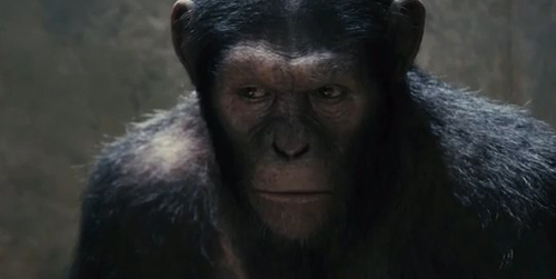 rise-planet-apes-01.jpg