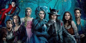 into the woods banner