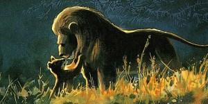 Il Re Leone Concept