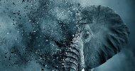 Netflix: ecco il trailer di Caccia all'Avorio, il docu-film prodotto da Leonardo DiCaprio