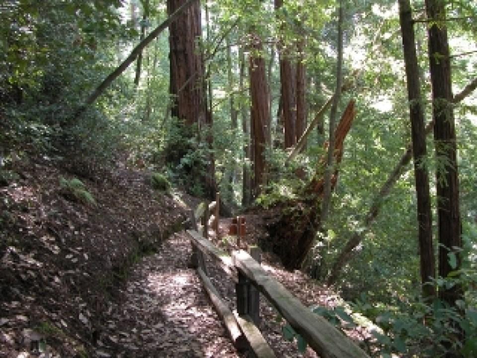 Slate Creek Trail