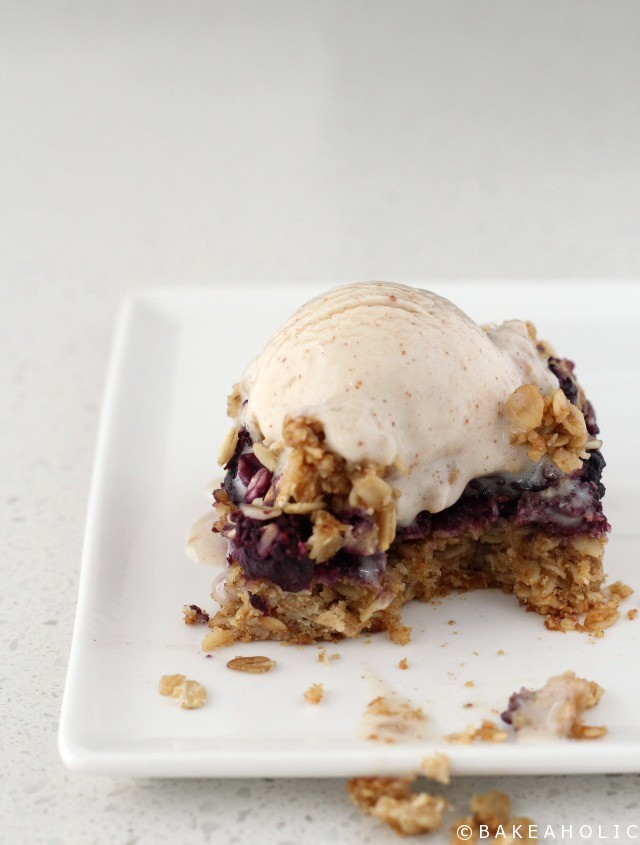 Blueberry Oat Bars - Bakeaholic.ca