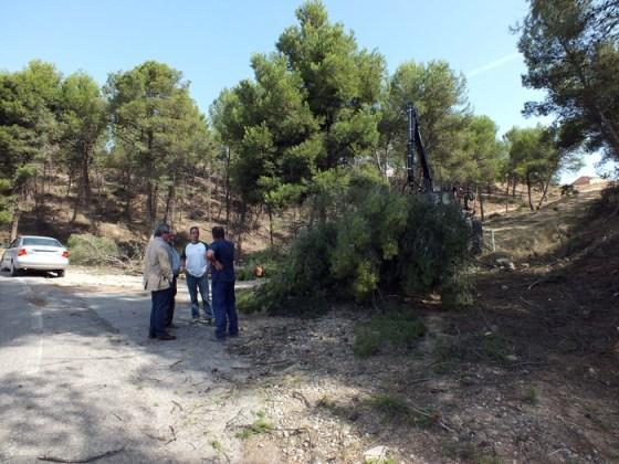 L'alcalde i el regidor d'Obres, acompanyants del tècnic municipal i el responsable de l'empresa de neteja a la partida Partialles. (Foto: Aj. Balaguer)