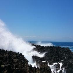 Water Blow Tawarkan Keindahan Dibalik Karang