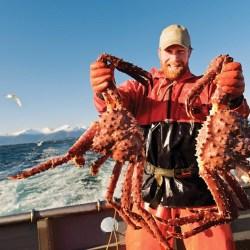 Musim Kepiting Alaska Dimulai dengan Panen Pembuka