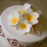 DwiBhumi Capri ijstaarten en bruidstaarten Balinese stijl en Indonesische smaak