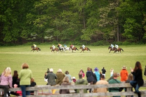 maryland_hunt_cup_from_distance