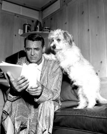 cary_grant_dog