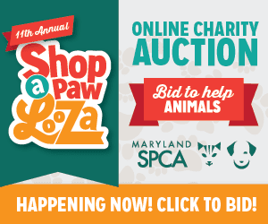 Shop-a-paw-looza Fishbowl ad rectangle 9.24.15