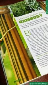 Bambusy-orientalne-trawy-sylwia-hennek-moj-piekny-ogrod-2014