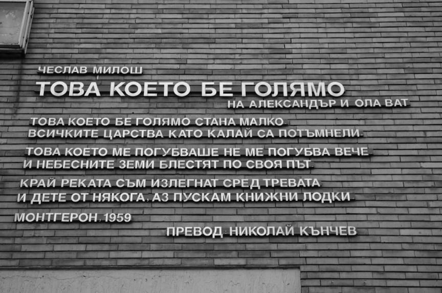Sava Tashev33