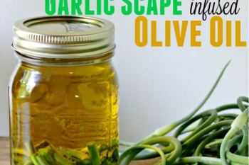 How to Preserve Garlic Scapes from the Garden