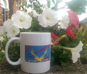 Golden Stag Mile 2017 – Final instructions and start lists