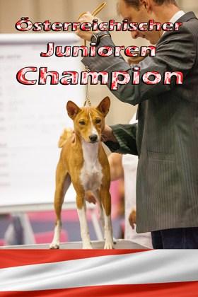 junior-champ