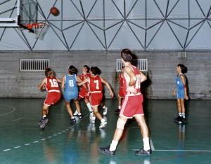 Serie D - a.s. 1993-1994