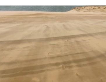 Dune 6 3 17 FC