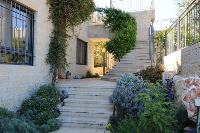 הרדנברגיה תלתנית על המרפסת וטרכלוספרמון יסמיני על גרם המדרגות