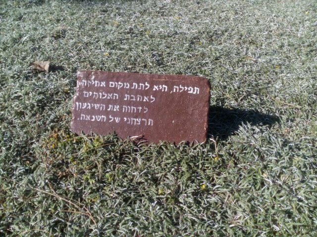 עברית, ערבית, צרפתית. לוסטיז'יה