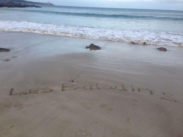 Photo St CAST - Plade de la mare (6)