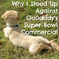 Why I Stood Up Against GoDaddy's Super Bowl Commercial #NoDaddy