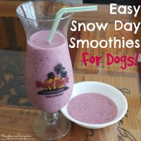 Easy Snow Day Smoothies for Dogs
