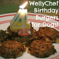 WellyChef Birthday Burgers for Dogs + GIVEAWAY!