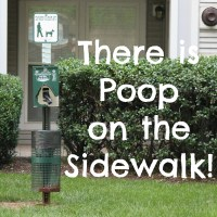 There is Poop on the Sidewalk!