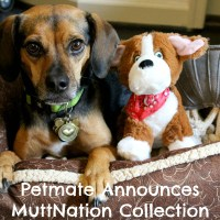 Petmate Announces All New MuttNation Collection Fueled by Miranda Lambert + GIVEAWAY!