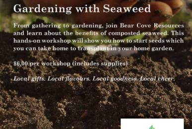 Gardening with seaweed- hands on