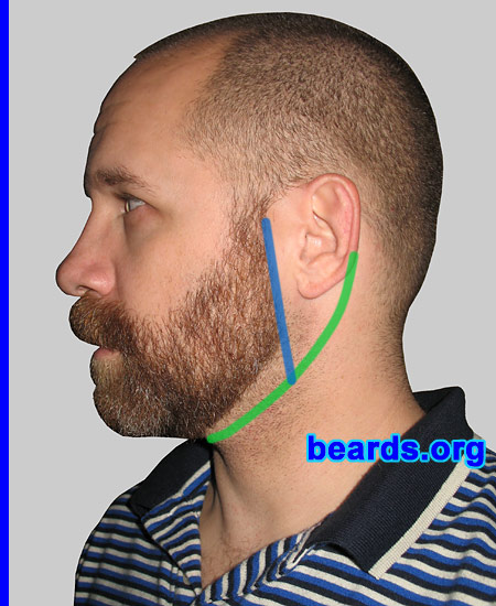 neck line: sideburn line extension