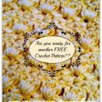 The Amazing Grace Free Crochet Pattern Series Is About To Grow….