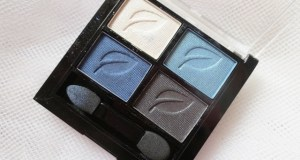 palladio herbal eyeshadow quad look