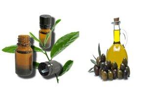 use-tea-tree-oil-with-olive-oil