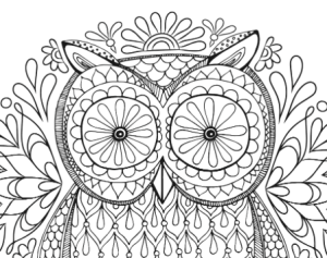 Owl adult coloring page free printable