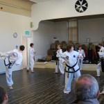 beccles-taekwondo-demo41
