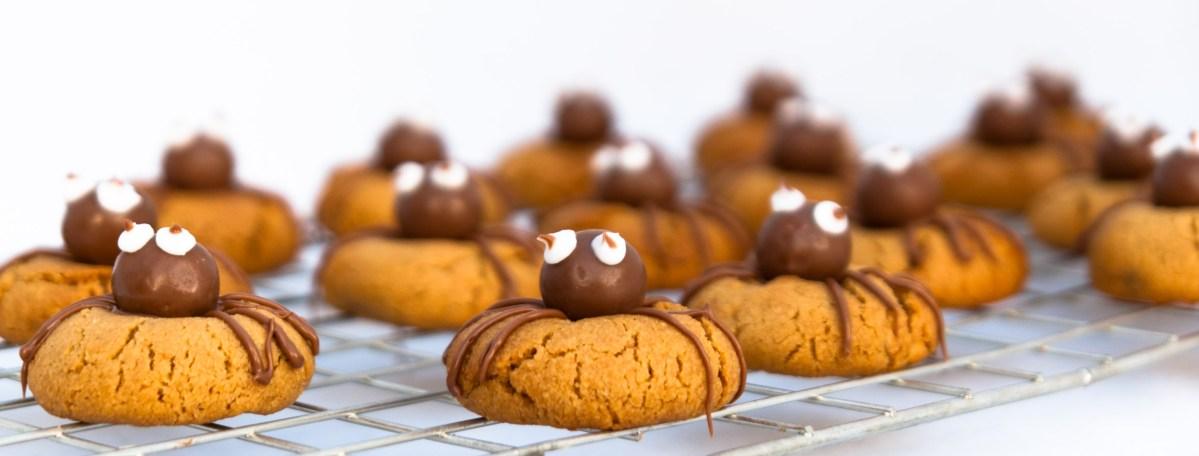 Peanut butter spider biscuits