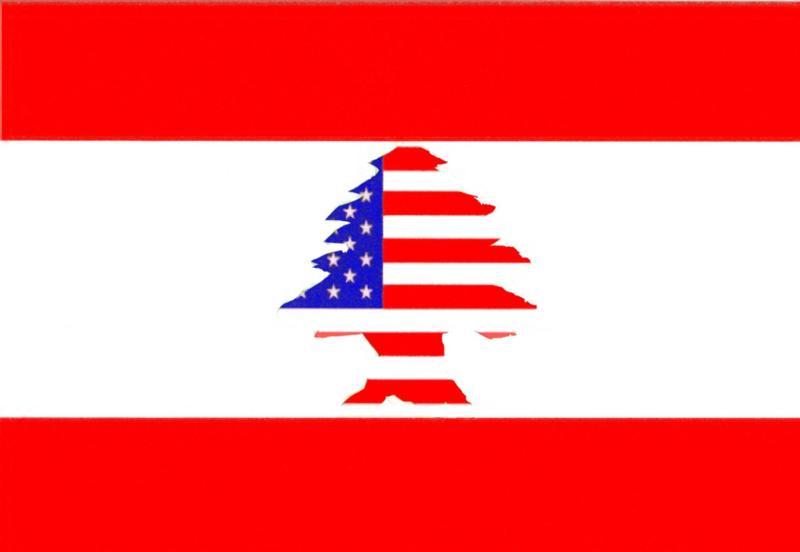 Lebanese VS. American VS. Lebanese American