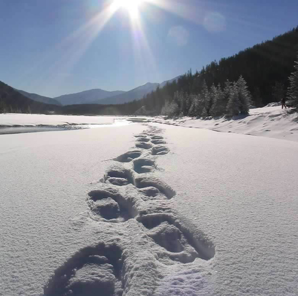 Sign Up for Jored Tannourine Snowshoeing Fun with the Discover Lebanon Group