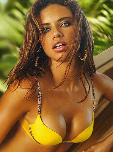 Top 5 Most Paid Models in the World