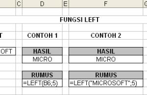fungsi-left