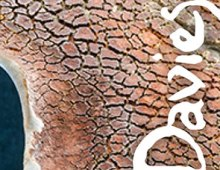 Immagine coordinata | Terry Davies | Casanova | Officina delle Arti
